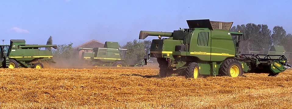 Consorzio agrario dell 39 emilia bologna modena reggio emilia for Consorzio agrario piacenza trattori usati